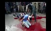 Animal butchering humans
