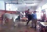 Horse get slaughtered 3