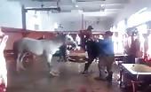 Horse get slaughtered