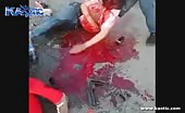 Horrible fatal road accident in egypt