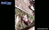 Man head hit by a passing train