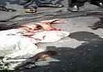 Horrible road accident in dhaka, bangladesh 2