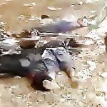 Extremists buddhist killing muslims burma 2