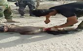 Iraqi soldier finishes the beheading of isis soldier