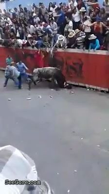 A man mercilessly gored by a bull in a bull run festival 12