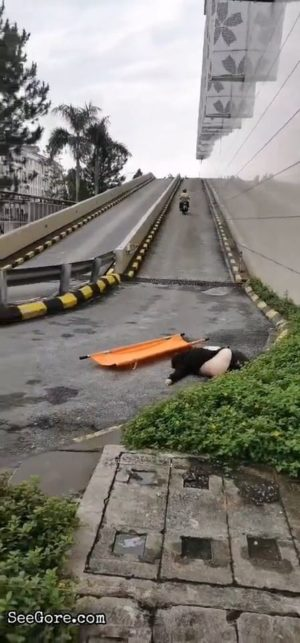 [Aftermath] Chinese girl suicide by jumping off from a tall building