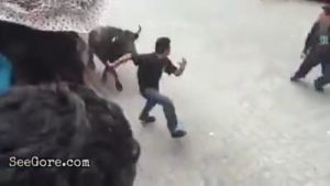 Man gored by an angry bull