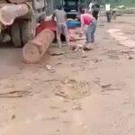 Big log left a nice curve on a worker 3