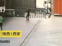 Man tries to catch a suicide jumper 7